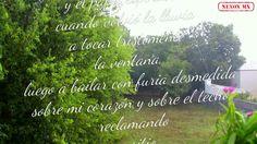 Llueve por Pablo Neruda.   By: Nexox Mx