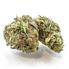 Agent Orange (AA) - Ryan Marijuana Shop (buy and smoke weed freely ) Cannabis Vape, Cannabis Shop, Buy Cannabis Online, Buy Weed Online, Weed Strains, Weed Shop, Weed Edibles, Smoke Weed, Medical Marijuana