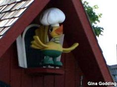 Miami, Oklahoma: Waylan's Ku-Ku Bird and Burgers - Popular burger joint on Route 66 still sports the Ku-Ku Bird on his rooftop perch. it's known for Giant grilled burgers with buttered buns and any topping Miami Oklahoma, Old Route 66, Travel Route, We The Best, Burgers, Rooftop, Bird, Green Tomatoes, Popular