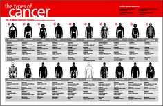types of cancers inforgraphic