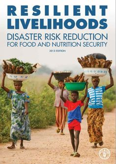 Disaster risk reduction (DRR) is about protecting people's livelihoods from shocks, and strengthening their capacity to absorb the impact of, and recover from disruptive events. Together We Can, Worlds Of Fun, Agriculture, Food To Make, Nutrition, Events, Activities, United Nations, Management