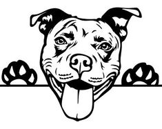 PITBULL IMAGE Svg for your projects, cricuit machine or any other cutting machine. pleas note this is only an svg and in the svg format. Animal Drawings, Art Drawings, Perros Pit Bull, Pitbull Drawing, Terrier Breeds, American Pit, Smiling Dogs, Dog Paws, Vinyl Decals
