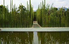 Jardín Etnobotánico de Santo Domingo