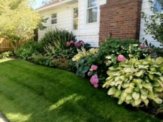 64 Ideas Landscaping Around House Foundation Plants Outdoor, Plants, Starting A Vegetable Garden, Foundation Planting, Backyard Landscaping, Landscaping Work, Landscape Edging, Garden Swing, Landscaping Around House