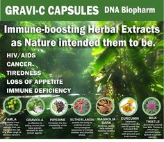 Herbal Extracts, Dna, Herbalism, Cancer, Products, Herbal Medicine, Gadget, Gout