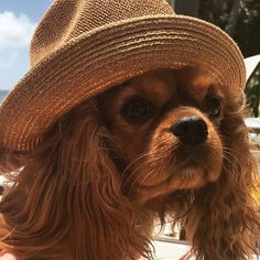 Ready for a Sunny Weekend - Love that hat!