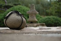 In a Japanese Garden, a rock tied with a rope means STOP, PRIVATE, Do Not Enter. #Japan #Rock #Rope