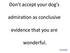 #Admiration, #Dog