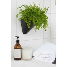 Hanging gardens planters (pack of 3) | hardtofind.