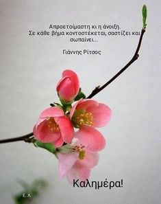 Good Morning Picture, Good Morning Good Night, Morning Pictures, Good Morning Quotes, Clever Quotes, Hello Spring, Greek Quotes, Happy Day, Greeting Cards