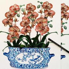 """Michelle Grayson's Instagram post: """"I'm really happy with how my little peach orchids have turned out. Is that what they're called? Peach orchids? . . . . . . . #sproutgallery…"""" White Art, Blue And White, Chanel Art, Little Peach, White Prints, Ginger Jars, Chinoiserie, Orchids, Vintage World Maps"""