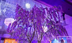 Perfect Purple Wisteria Tree and Chandelier by Event Design Wisteria Tree, Purple Wisteria, Event Company, Bat Mitzvah, Corporate Events, Event Design, Planting Flowers, Avatar, Wedding Decorations