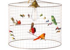 Lampe volière, lampe enceinte oiseau ou luminaire oiseaux en cage, voici ou trouver ou comment fabriquer cette lampe design à moindre coût !