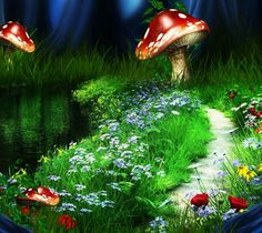 Giant mushrooms and pretty flowers; that's how I see Fairyland
