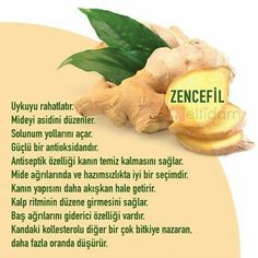 Muhteşem The miracle of ginger - Sağlık Healthy Beauty, Health And Beauty, Health And Wellness, Health Tips, Health Fitness, No Gluten Diet, Healthy Drinks, Healthy Recipes, Alternative Health