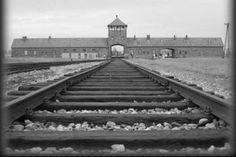 Come si ricorda la Giornata della Memoria ? Il 27 gennaio di ogni anno si celebra la Giornata della Memoria per non dimenticare l'Olocausto. Qui vi presentiamo una raccolta, parziale ma significativa di poesie, canzoni e brani di libri, per non dimenticare mai