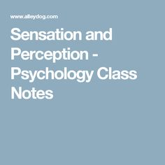 Sensation and Perception - Psychology Class Notes