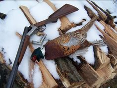 A page of all the things in outdoor life that I love the most. An assortment of found, my own and others inspiring images from the web. Disclaimer: All images are assumed to be in the public domain. Grouse Hunting, Pheasant Hunting, Hunting Tips, Duck Hunting, Bird Hunter, Birds For Sale, Hunting Pictures, Game Birds, Outdoor Life