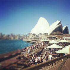 I love my city x