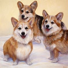 Corgi Dog Painting of 'Three Corgi's' art print by FerraroFineArt