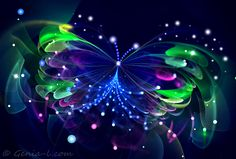 ∻ Butterfly Fractals ∻