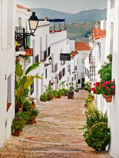 spain- would love to visit some day!
