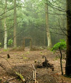 Suspended Land Art by Cornelia Konrads - it's like the door to the forest