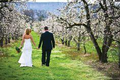 Destination Weddings in Southern Oregon | Bridal and Wedding Planning Resource for Oregon Weddings | Oregon Bride Magazine