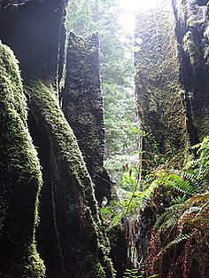 Del Norte County California Attractions