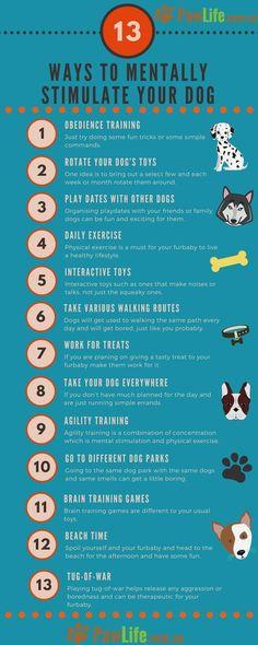 #trainingpuppy #puppytraining
