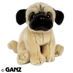 Webkinz Signature Small Pug with Trading Cards by Ganz, i dont know if you have ever seen  a Baby pug........ but they are ADORABLE!!!