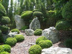 wunderschöne grüne pflanzen und kies mit steinen im modernen garten