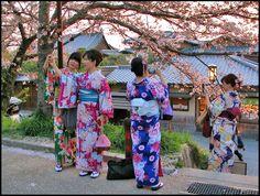 Spring in Japan / Taking selfies, a photo from Kyoto, Kinki | TrekEarth