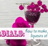 DIY: A Cordial Event – Making Your Own Flavored Liqueurs at Home | Inhabitat - Sustainable Design Innovation, Eco Architecture, Green Building