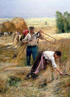 Julien Dupre - harvesting