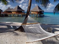 You can not beat the relaxation degree that you reach in a hammock with a view like this.  I remember looking up through the palm trees as the sun rays tried to get to me.