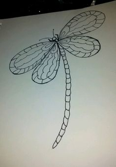 start of my dragonfly drawing