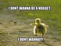 I dont wanna be a nugget!.