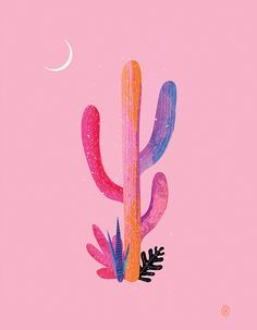 // desert dreaming // courtesy of Andrew Bannecker illustration nature psychedelic cactus graphic design poster Art And Illustration, Kaktus Illustration, Illustrations, Silvester Trip, Creation Art, Cactus Art, Cactus Drawing, Garden Cactus, Cactus Painting