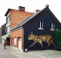 street art grafitti Dzia gato