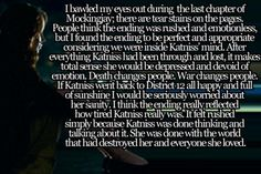 I could not have expressed my feelings about Mockingjay better than this.