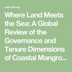 Where Land Meets the Sea: A Global Review of the Governance and Tenure Dimensions of Coastal Mangrove Forests | Center for International Forestry Research