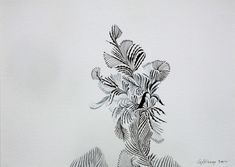 Untitled III (2012) ink on paper by Chandraguptha Thenuwara via The Artling
