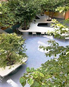 Gallery of Tree Desk Garden / Da landscape - 5 Landscape Architecture, Landscape Design, Garden Design, Urban Furniture, Street Furniture, Indoor Garden, Home And Garden, Landscaping Tips, Shade Landscaping