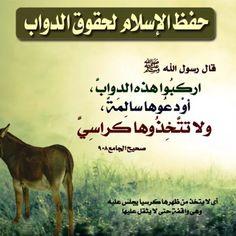 Islamic Quotes, Dark Side, The Darkest, Allah