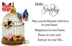 Happy Sunday to all,God bless,xxx keep safe  ❤❤❤