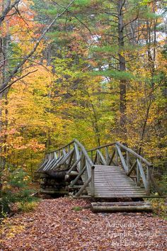 adirondack bridges - Google Search
