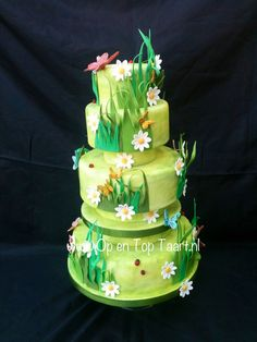 Other+Cakes+-+Spring-themed+cake.+Daisies+&+Butterflies+just+waiting+for+the+sun+to+come+out!