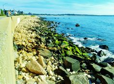 The Wall - Narragansett, Rhode Island Rhode Island History, Summer Dream, Places Ive Been, Fields, Ocean, Water, Outdoor, Gripe Water, Outdoors