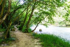 Acheron Springs - The Footpath Country Roads, Community, River, World, Nature, The World, Naturaleza, Rivers, Nature Illustration